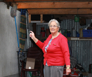 Anne Slator, Gorey, who has a sparrow nesting on the household mop in her carport