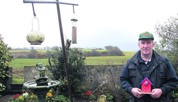 n Galbally farmer Tom Whelan in his garden equipped with a bird feeding station which he says is now little used because of the buzzards.