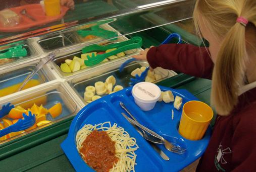 GardaÍ have been called in to investigate suspected fraud in the operation of the school meals schemes