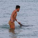 The dolphin calf being guided to safety by local teenager Sammy Delaney