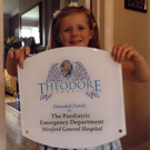 Theodore's sister Averie (4) is pictured with the plaque