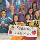 Seashell Girl Guides got into the business of selling cookies at Gorey Shopping Centre recently