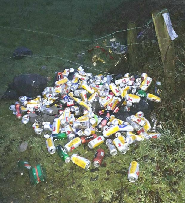 More than 500 beer cans were dumped at the 1916 garden in Hollyfort village. Image: Gorey Guardian