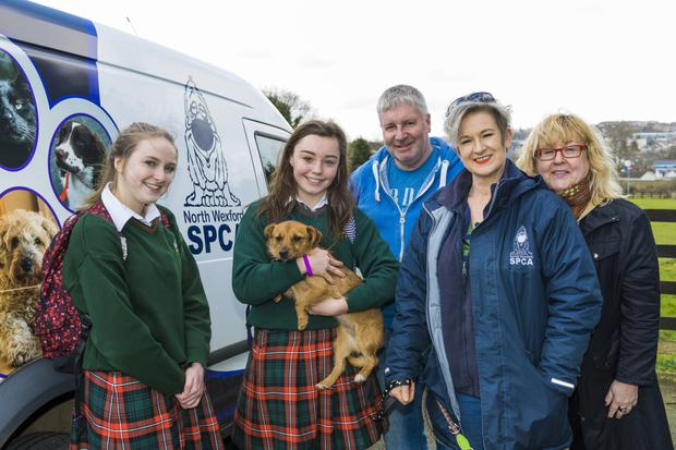 Students Cathy Challoner and Eimear O'Hagan, with NWSPCA Kennel Manager Stephen Whyte, NWSPCA Fund-Raising Manager Tracy Smith, and teacher Liz Russell from Gorey Community School