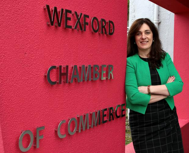 Enda Kavanagh, pictured in February on the announcement of her new role as Wexford Chamber CEO