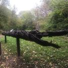 The 'Witness Tree' which will be unveiled at the Irish National Heritage Park next week