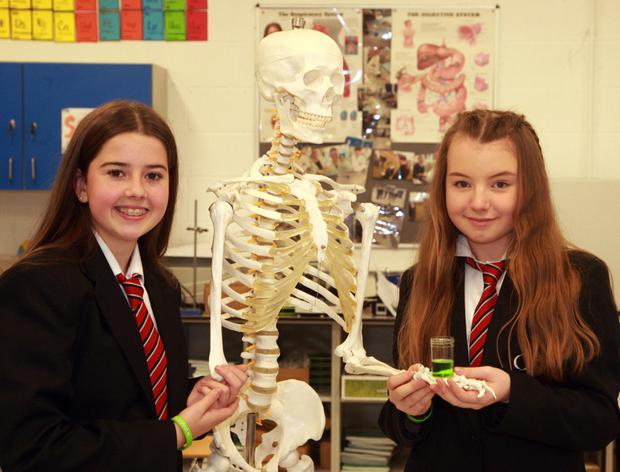 Lauren Paisley and Charlotte Gray with their wheat grass project