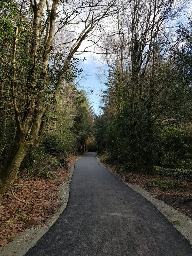The newly tarred trail at Ramsfort Woodlands