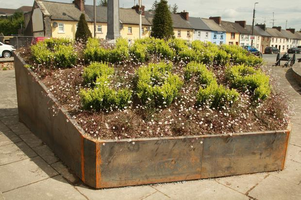 The Gorey 400 flower bed which spells out 'Guaire 1619'