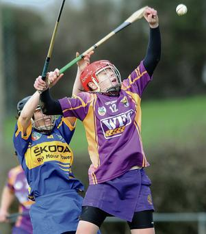 Fiona Kavanagh, Wexford, in action against Liz Power, Tipperary. Irish Daily Star National Camogie League Division 1 Group 2, Tipperary v Wexford, The Ragg, Thurles, Co.Tipperary.