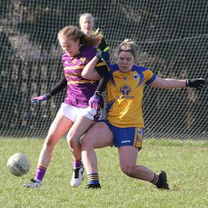 Wexford's Niamh Butler uses her strength to get the better of Clare's Laurie Ryan in St Patrick's Park last weekend. Photos: John Walsh