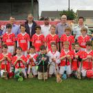 The Fethard hurlers
