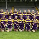 The Wexford Senior camogie panel suffered an unexpected heavy defeat away to Offaly, one week after beating Limerick at home