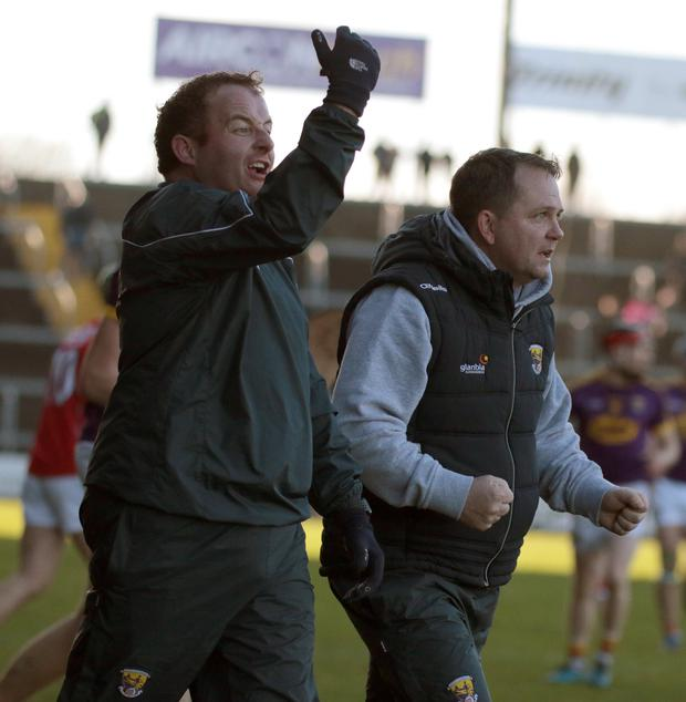 An animated Seoirse Bulfin and Davy Fitzgerald on the sideline during Sunday's win