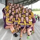 The Wexford squad get acquainted with the trophy after their victory in Banagher, Co. Offaly, on Sunday