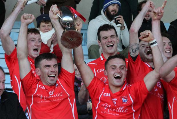 Joint captains Garrett Foley and Graham O'Grady lift the cup for Fethard