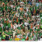 Irish supporters trying to keep their spirits up during the drubbing by Spain in Euro 2012