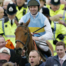 A delighted Conor O'Dwyer on board Hardy Eustace after winning the Champion Hurdle in 2005