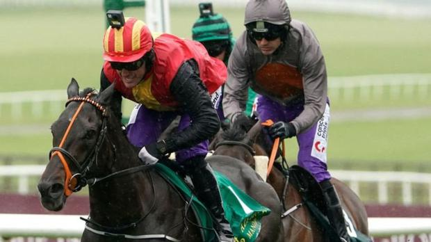 Tony McCoy on Quizzical wins the Pat Smullen Cancer Trials race from Ruby Walsh on Aussie Valentine