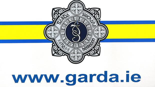 The pair, who are in their late teens and early 20s, fled before gardai arrived.