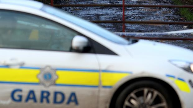 Dad-of-five pushed garda to the ground