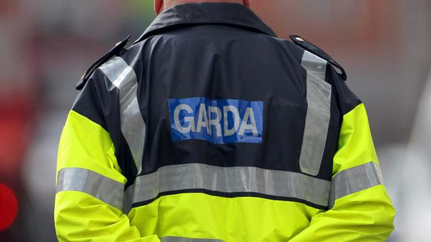 The incident happened when officers from Donnybrook Garda Station raided a flat.