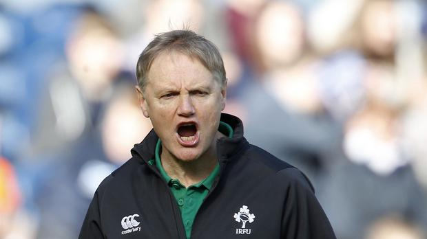 Joe Schmidt, pictured, has Ireland better equipped than ever for World Cup success, according to Shane Horgan