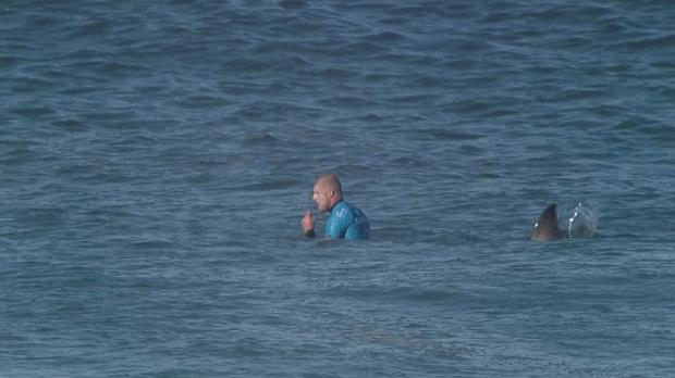Surfer Mick Fanning moments before he was knocked off his board by a shark (World Surf League of Australian)