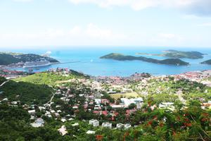 Eastern Caribbean: St Thomas panorama from Mountain Top