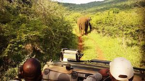 Thanda Safari: Rangers Ronie and Sobelo on the private game reserve in South Africa