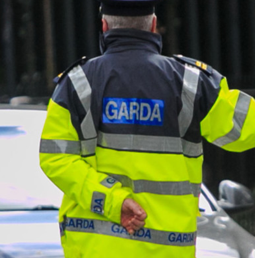 The man fleed from gardaí in the mistaken belief they had been looking for him. (Stock)