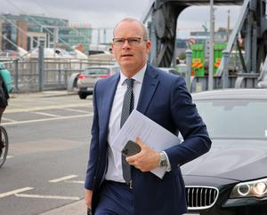 Simon Coveney has taken over the brief formerly held by Paul Kehoe, who launched probe