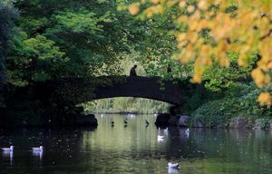 Autumn in St Stephen's Green