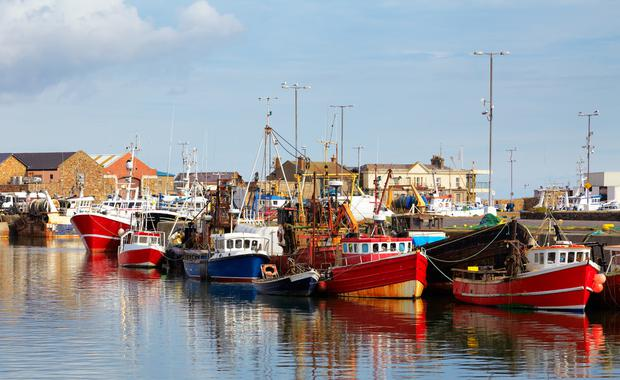 'Badly-needed' Howth redevelopment project was hailed as 'happy days' for harbour town