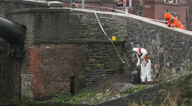 Scene of the Grand Canal incident. Photo: Gareth Chaney/Collins