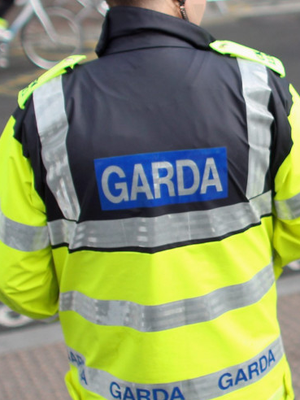 Gardai raided the house