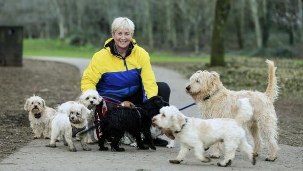 Jennanne Fennelly with her dogs in Killiney Hill yesterday. Photo: Gerry Mooney