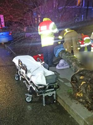 Firefighters administer first aid to a man hit by a tree in Crumlin