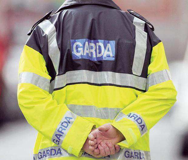 Gardai searched the home