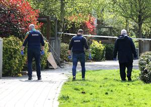 Gardai searching near the scene where shots were fired at a house in Castlegate Square in Adamstown, Lucan, on Thursday night