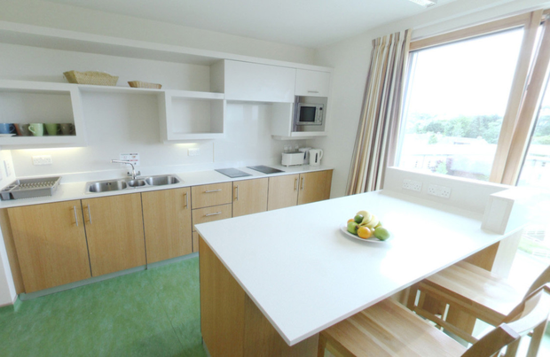 The UCD website for accommodation at Roebuck Castle shows a kitchen, gym and small bedroom