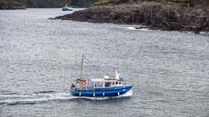 A search team pictured on the cliffs at the mouth of Dingle habour