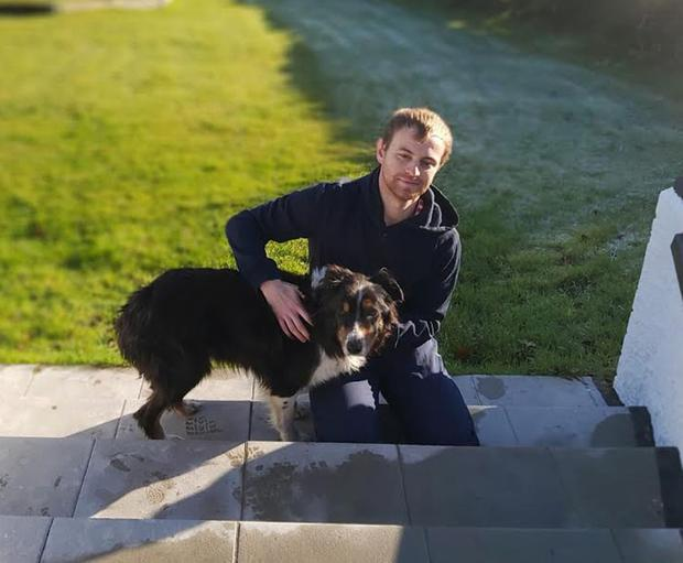 Beloved collie Roy is now back with Paul O'Hanlon and his family after going missing for two weeks