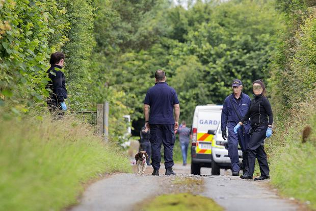 Gardai carry out searches in Co Meath this week.