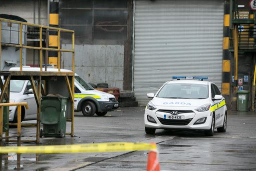 Gruesome: Gardai had to shift through tonnes of waste to find the body parts