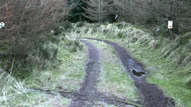 KIllakee Mountain where Elaine O'Hara's body was found