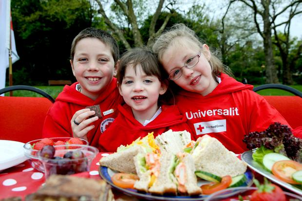 Irish Red Cross stars join global campaign celebrating 50 years of humanitarian principles on Red Cross Day Red Cross and Red Crescent societies worldwide celebrate the 50th anniversary of the Seven Fundamental Principles that underpin our unique role in global humanitarianism.
