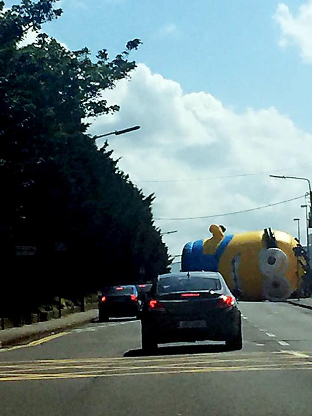 Minion on the loose in Santry