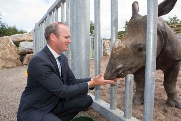 Minister for Agriculture, Food and the Marine Simon Coveney TD with Jamil a 2 year old Indian Rhino at the official opening of the New Asian Sanctuary at Fota Wildlife Park