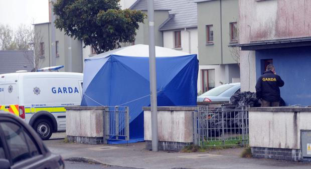 Gardai search a skip in Kinnegad in their probe into the murder of Silvestras Stoskus